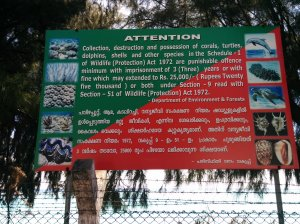 Restrictions on carrying the corals from Lakshadweep