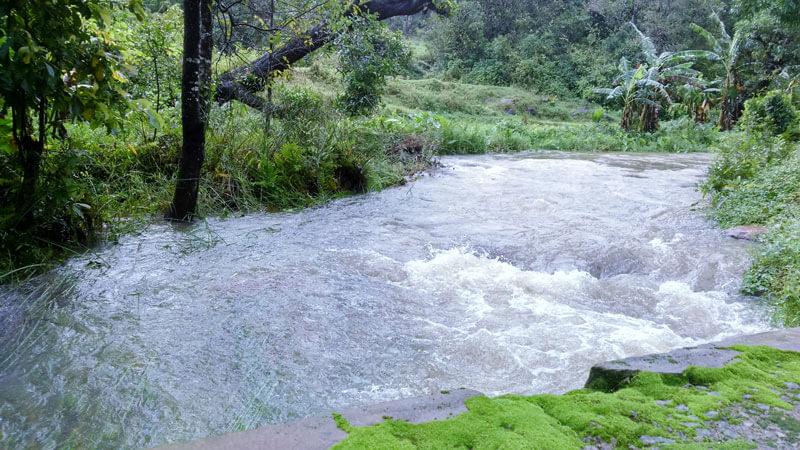 Chiguru-Homestay-Coorg-Water-Stream